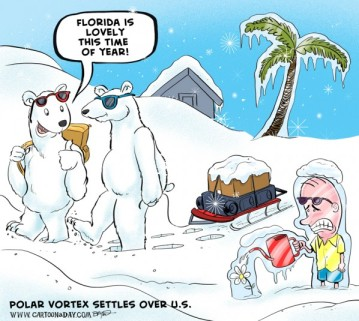 polar-vortex-cartoon-polar-bear-598x535