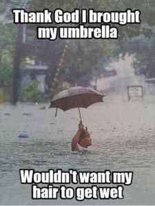 Funniest_Memes_thank-god-i-brought-my-umbrella-wouldn-t-want_11465